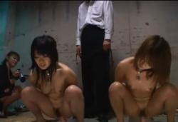 【美少女調教SM動画】二人の全裸首輪奴隷少女が強制ディルド騎乗オナニー(Porn hub:7分)の画像